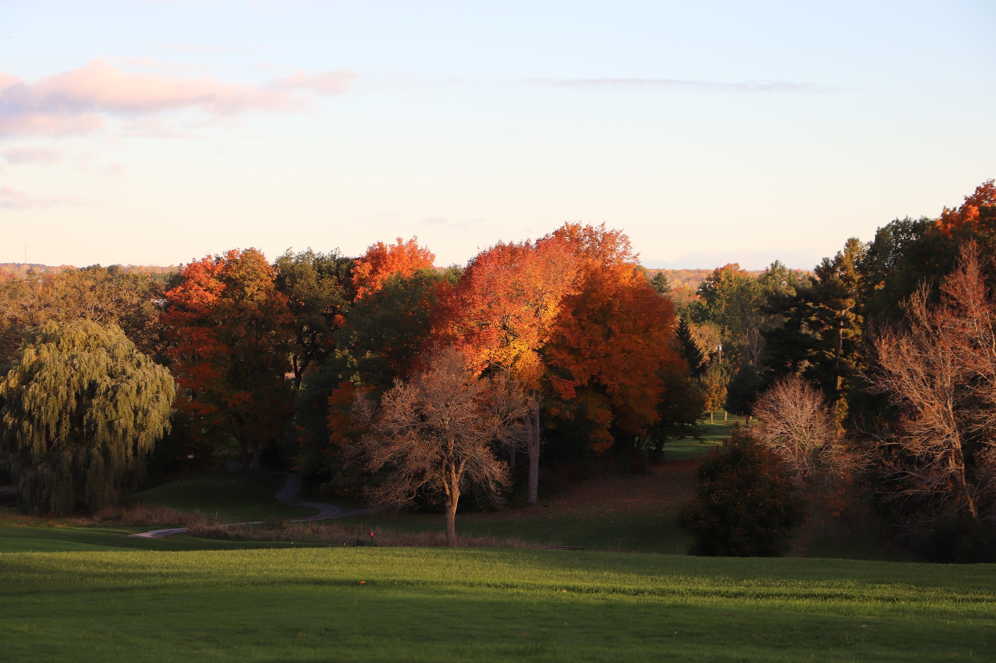Napanee Golf Club Fall Colours.jpg