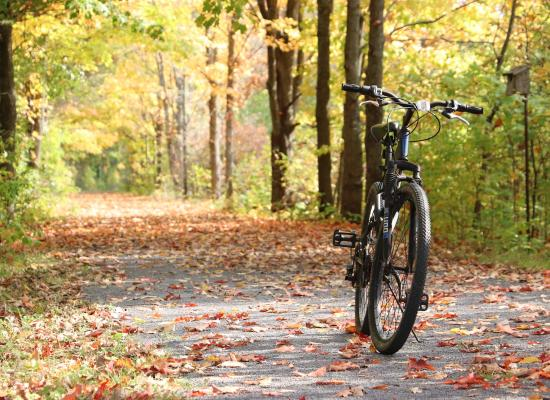 Mountain Bike on the Cataraqui Trail